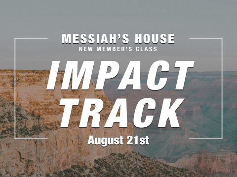 MH Impact Track